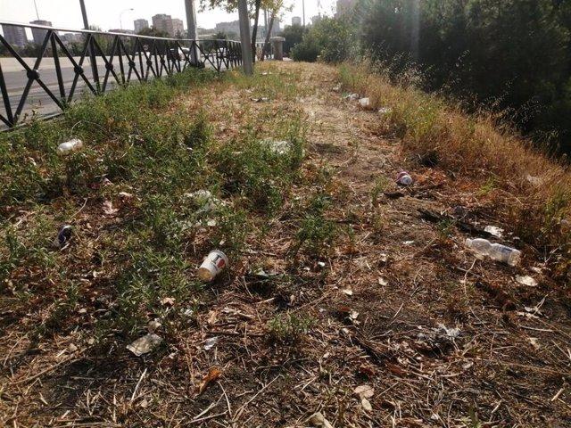 Más Madrid exige al Ayuntamiento que resuelva el problema de los chinches y las ratas en el distrito de Retiro