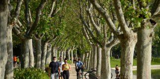El Retiro y otros ocho parques de Madrid mantendrán zonas balizadas por la alerta amarilla